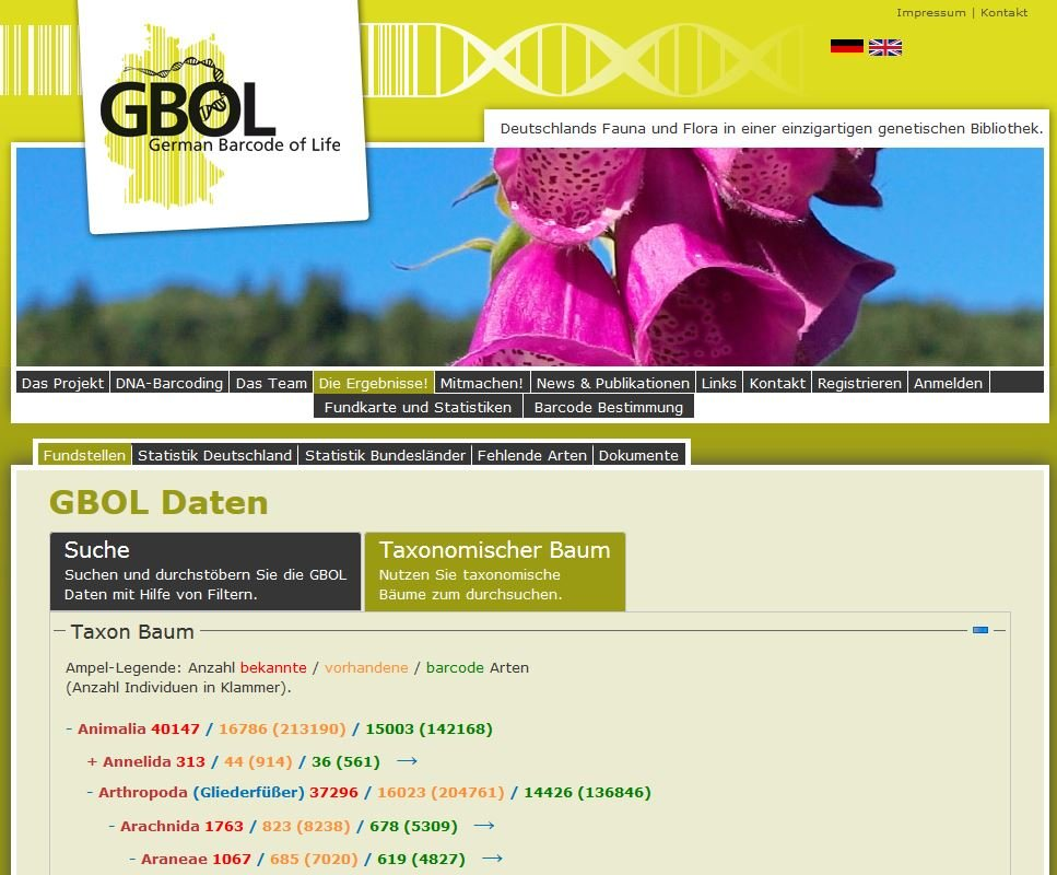 [Translate to English:] Screenshot of the GBOL barcode library