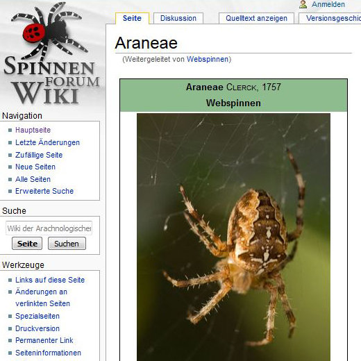 Screenshot of Wiki - Websites